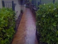 Pathway along the side of house